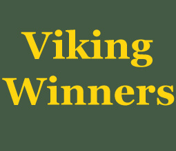viking winners casino review plain logo