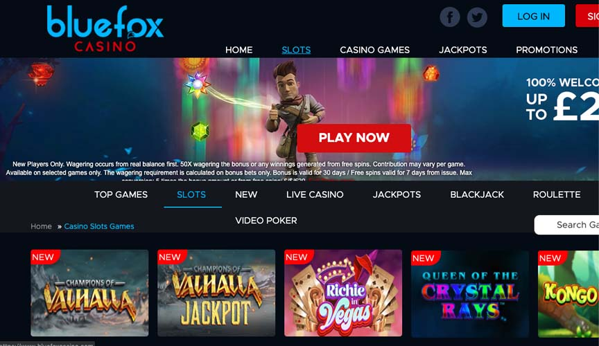 casinoveteran bluefox casino