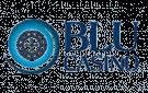 casinoveteran casino blu